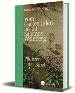 Vom Garten Eden bis zu Salomos Weinberg | Bundesamt für magische Wesen