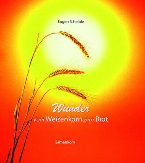 Wunder vom Weizenkorn zum Brot   Bundesamt für magische Wesen