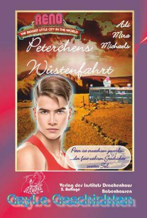 Peterchens Wüstenfahrt: Peter ist erwachsen geworden, Band 02 der Trilogie. Schwule, erotische Trilogie um einen fränkischen Jungen in den USA