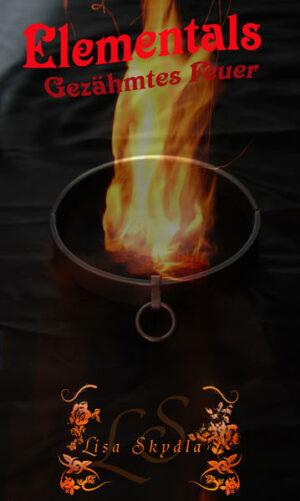 Elementals-Gezähmtes Feuer