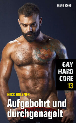 Gay Hardcore 13: Aufgebohrt und durchgenagelt | Bundesamt für magische Wesen