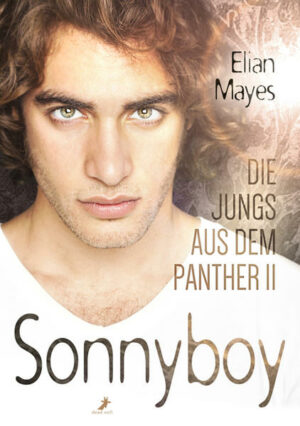 Die Jungs aus dem Panther 2: Sonnyboy