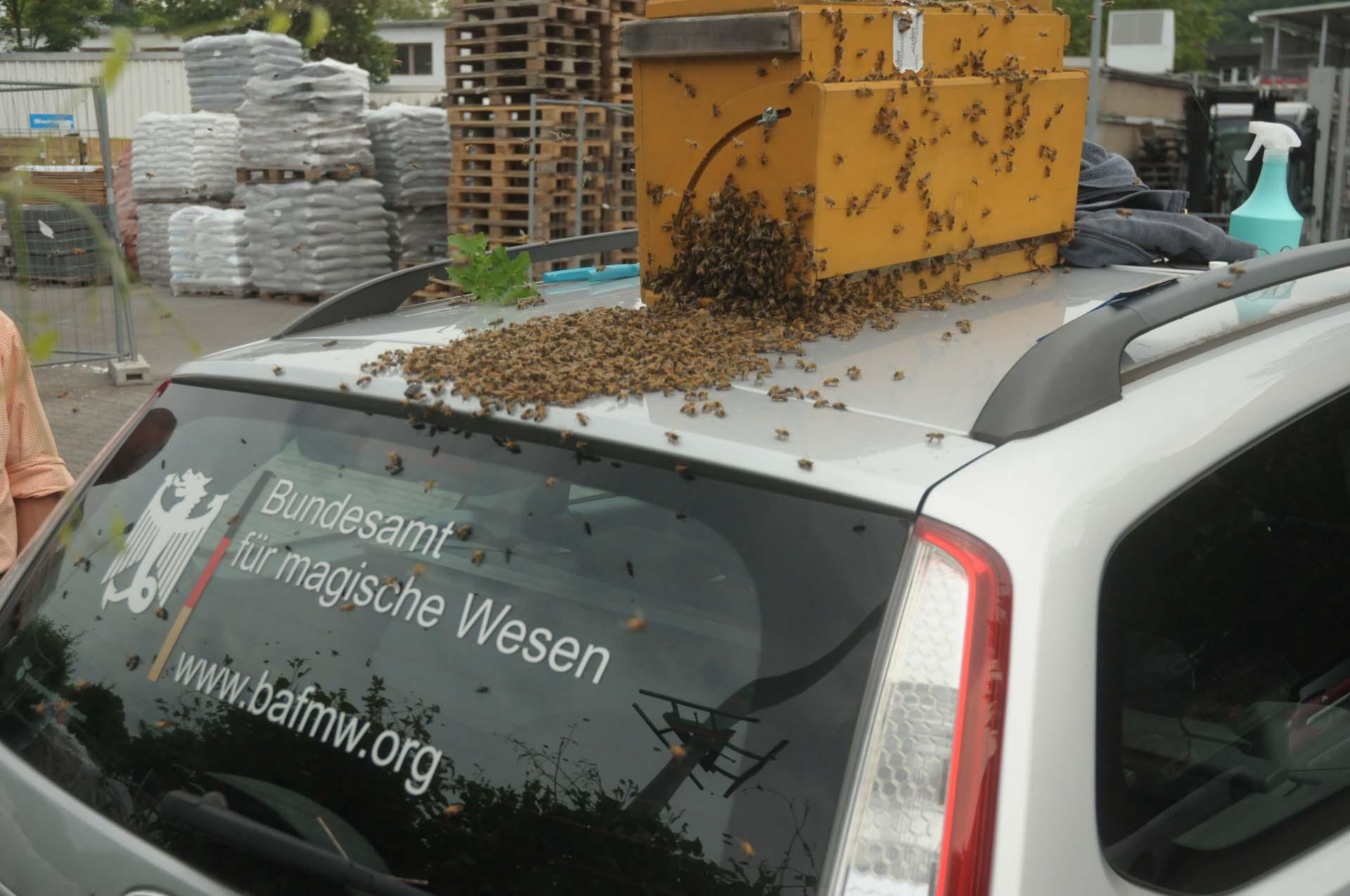 Der BAfmW-Dienstwagen im Einsatz für Bienen und Vaterland! Foto: Bundesamt für magische Wesen