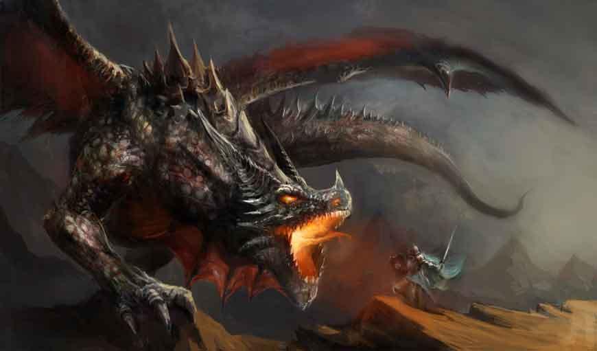 Bücher über Drachen im Bundesamt für magische Wesen
