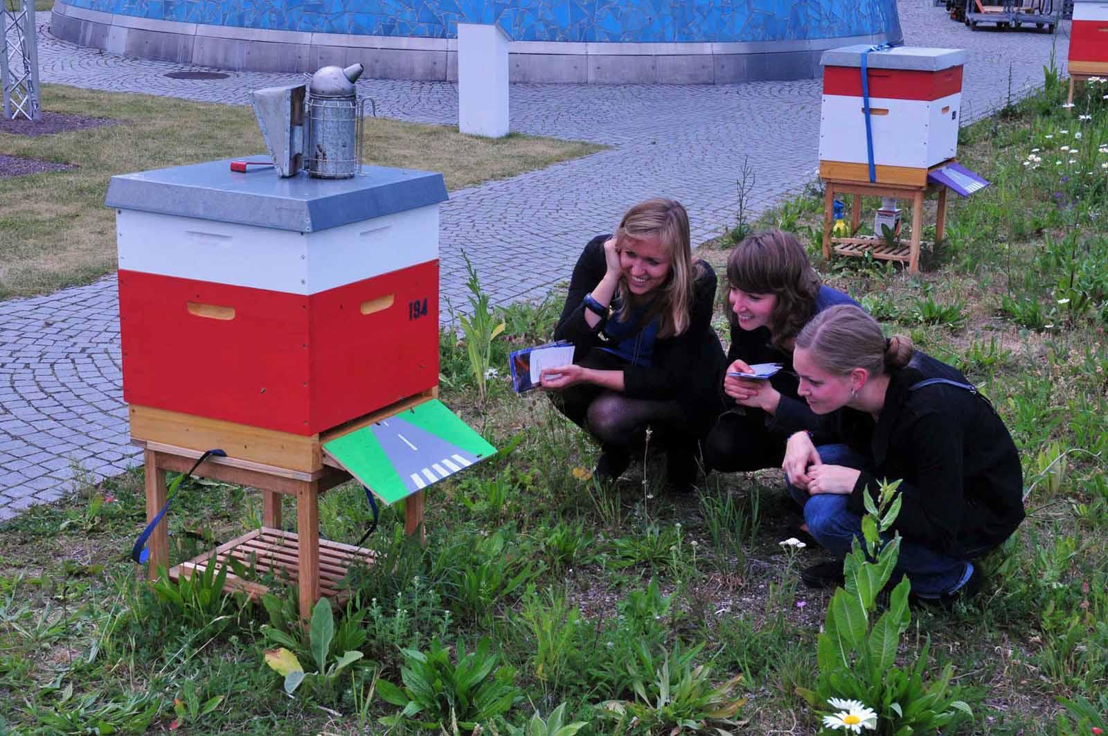 Auf Du und Du mit den Bundesbienen auf dem Dachgarten der Bundeskunsthalle