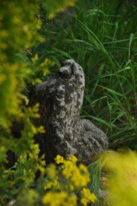 Ein Weibchen der Drachenart Garten-Wachling (Custodes Hortorum) in typischer Pose innerhalb seines Habitates (Foto: Thorsten S.) Ein Jungtier der Drachenart Garten-Wachling (Custodes Hortorum) in typischer Pose innerhalb seines Habitates