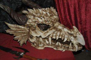 Stunde der Drachen: Drachenzählung 2017: Skelettierter Drachenschädel, gesehen auf der Messe Jagd und Hund (Foto: Bundesamt für magische Wesen)