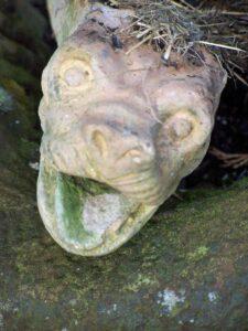 Stunde der Drachen: Porträt eines Schlänglers, auch als Erdschleicher, Würmler oder Steinwurm bekannt. (Foto: Andrea Hoffmann)